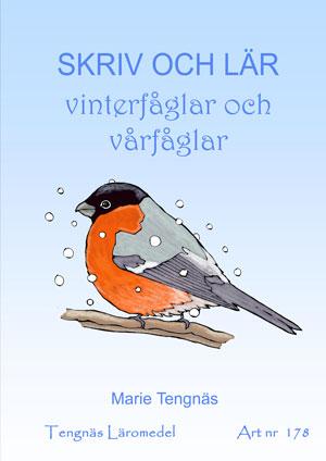 Skriv och lär - Vinterfåglar och vårfåglar kopieringsunderlag