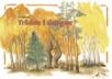 Årstidsresan / Träden i dungen