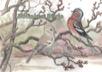 Årstidsresan / Bofinken Börje