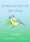 Stora läs och lär - fåglar i Sverige kopieringsunderlag