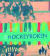 My world: lilla ishockeyboken